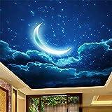 Mrlwy Papel tapiz mural personalizado 3D Luna cielo estrellado paisaje fresco sala de estar dormitorio Hotel techo Mural arte creativo-120x100CM
